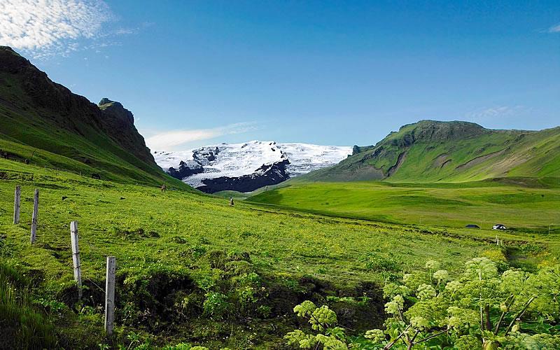 islandia ogrodzone pastwiska
