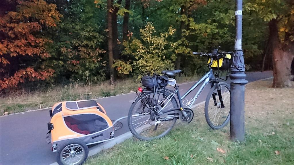 przyczepka-rowerowa-dla-psa