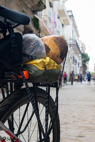 kuba na rowerze (15)