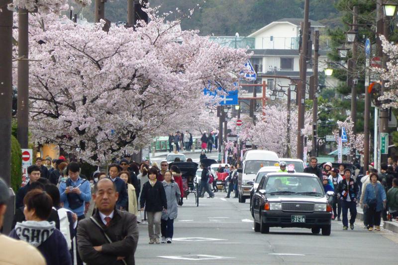 japonia na rowerze (211)