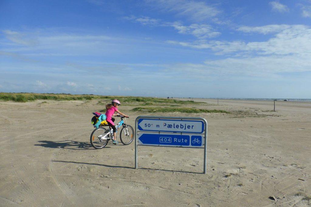 Dania na rowerze (115)