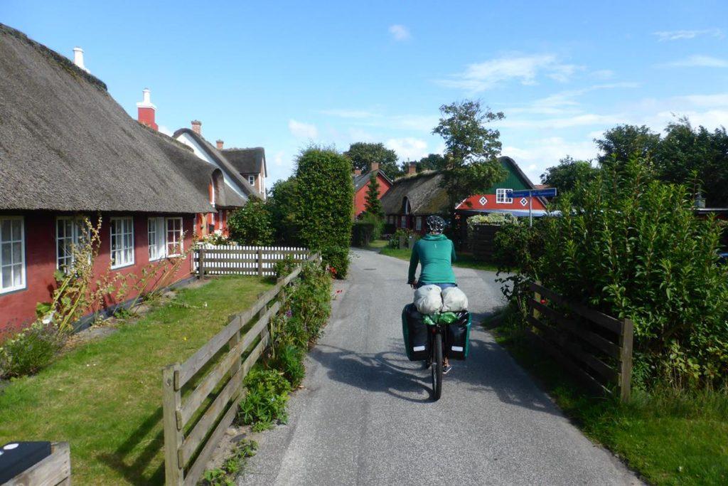 Dania na rowerze (35)