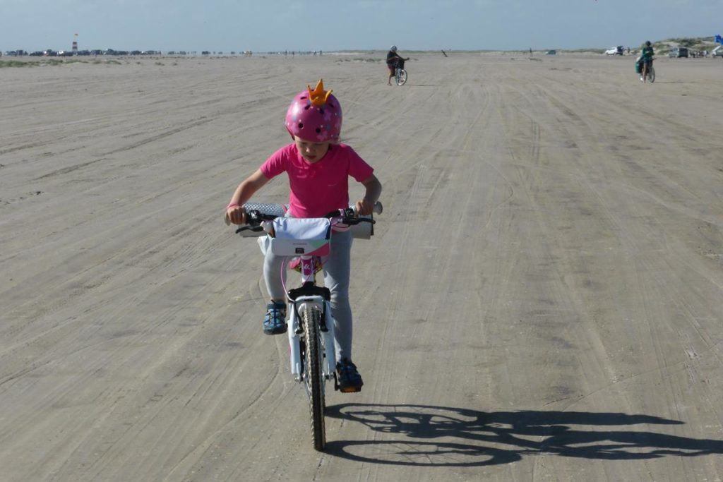 Dania na rowerze (88)