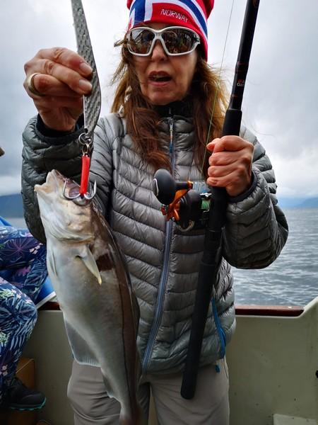 łowienie ryb norwegia