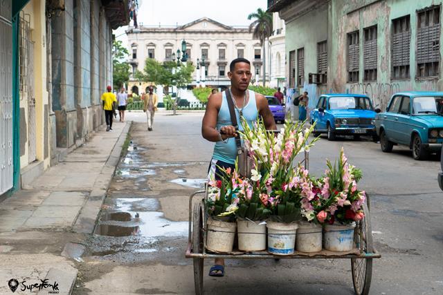 Kuba z plecakiem (72)